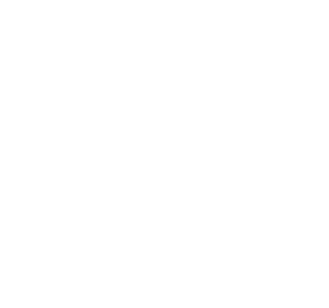 ADAPT Logo White